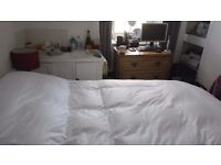 Double room for rent in quiet cottage - Liskeard