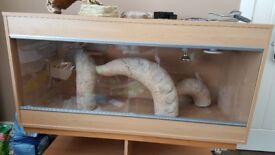 45 Inch Vivarium/Full Reptile Set Up (Maxi-Large VivExotic Vivarium) suitable for Bearded Dragons