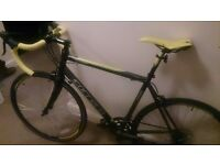 Carrera TDF Mens Ltd Road Bike