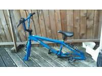 Mangoose bike