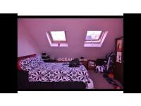 Lovely Large Double Attic Room in shared house, Mutley Plymouth, PL4