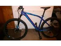 SPECIALIZED TRAIL BIKE (LARGE)