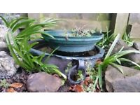 Antique Pewter Planter / Miniture Pond