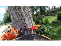 Trees cutting , and Gardens cleaning !