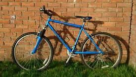 Raleigh Cyclone mountain bike