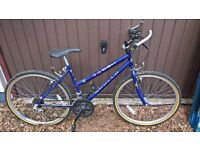 ladies apollo mountain bike 17 inch frame
