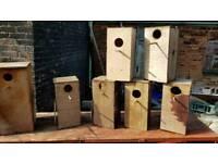 Parakeet nest boxes