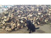LOGS , FIREWOOD & KINDLING ..HARDWOOD WELL SEASONED OAK,BEECH & ASH Bs48 Nailsea/Wraxall
