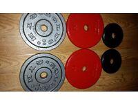 22.5kg metal plates