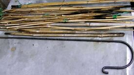 short bamboo garden canes and a long metal stake with hook for hanging a lantern for instance
