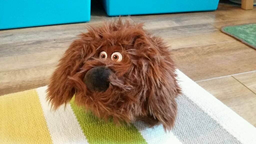 Duke from Secret Life of Pets soft toy dog