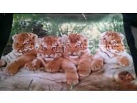 NEW Cute Baby Tiger Fleece Blanket / Throw