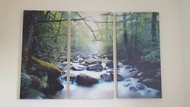 Forest & River Scene Canvasses
