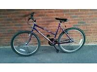 Ladies Raleigh mountain bike in great condition