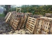 Appox 50 pallets for firewood