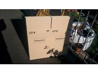 cardboard boxes 43cm H x 40cm W Double skinned used but excellent condition
