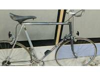 Old classic Raleigh pulsar racing bike Project project