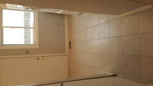 Renovated 3 or 4 bedroom townhouse London Ontario image 5
