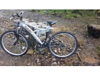 TRAX Boys mountain bike