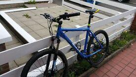 Raleigh M-Trax Men's Lahar Mountain Bike