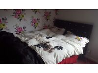 Double room to rent. Mon to Fri only at 320 pcm including all bills
