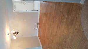 Renovated 3 or 4 bedroom townhouse London Ontario image 8
