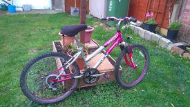 silverfox girls bike.