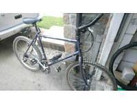 Raleigh amazon bike