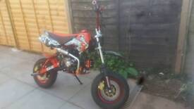 Stunt pit bike