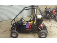 Petrol off road buggy/go kart 49cc