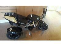 Mini moto trike
