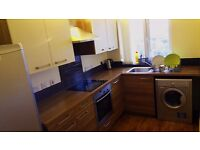 1 Large double bedroom in luxury 2-bed flat apartment