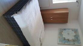 Spacious Double bedroom in beautiful Battersea flat
