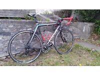 Focus Cayo carbon fibre road bike