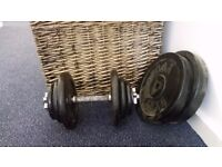 1 x Dumbbell and Weights (Total 37.5 kg)