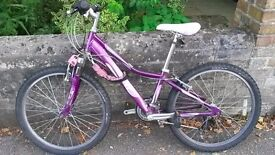 Bicycle - Small - Solid -30 pounds