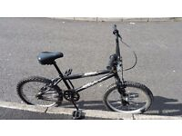 Kids X Rated 20 inch BMX