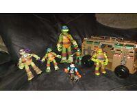turtle bundle