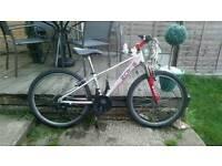 "Raleigh 24"" wheel mountain bike"