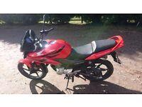 Honda CBF125 62 Redg