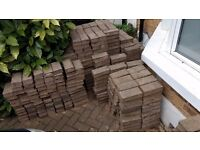 Several hundred Light Grey Concrete Pavier Bricks - 5cm x 10cm x 20cm