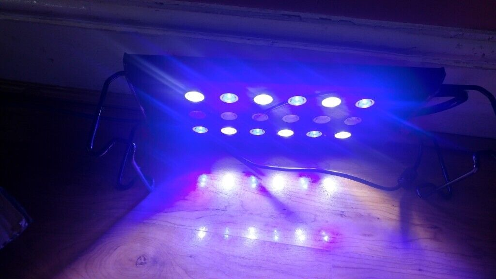 Marine Fish Tank Lights In Leicester Leicestershire Gumtree
