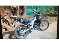 125cc zongshen arktix