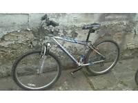 Moongosse mens mountain bike 21 speed