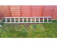 Extension ladder 11 steps