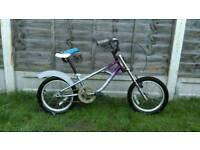 Kids Cruiser bike