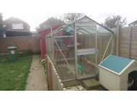10 by 6 Greenhouse. Aluminium frame with glass panels. Wood slatted workbench.