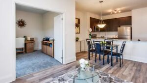 NEW! 2 Bedroom Apartment for Rent in Midland