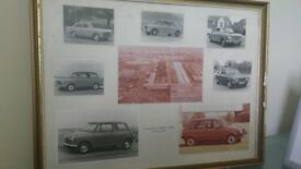 Framed Presentation of Photographs ~ Vintage British Leyland Cars
