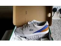 Brand new lacoste trainers size 8